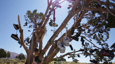 Little girl in tree filled with hanging shoes Footage