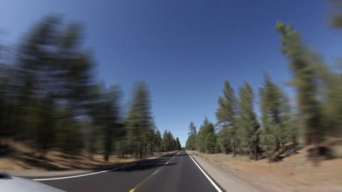 Straight highway through forest Footage