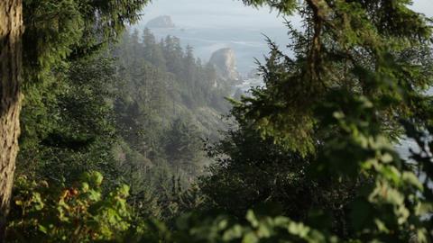 Hillside coastline Footage