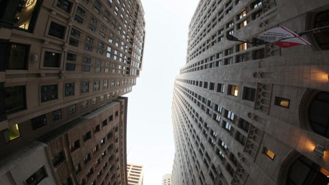 Birds Fly Between High Rises Footage