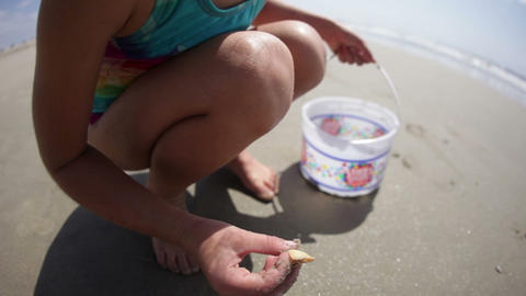 Young Girl Finds Seashell Footage