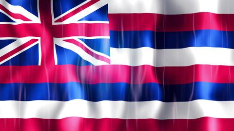 Hawaii State Flag Animation Animation