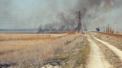big fire in the field blown by a strong wind, Ukraine GIF