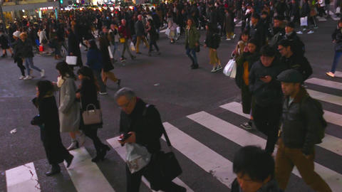 Shibuya crossing over Live影片