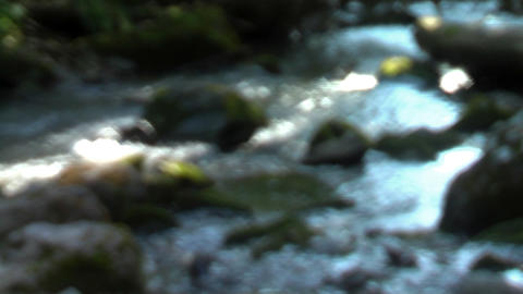 Stream Footage