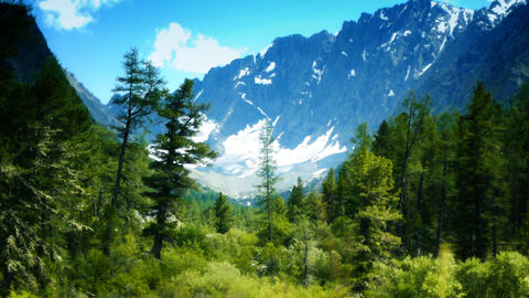 Wind in the mountains Stock Video Footage