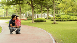Father and Son Walking in the Park Together Stock Video Footage