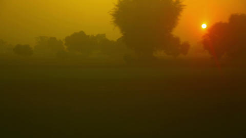 Hazy Dawn stock footage