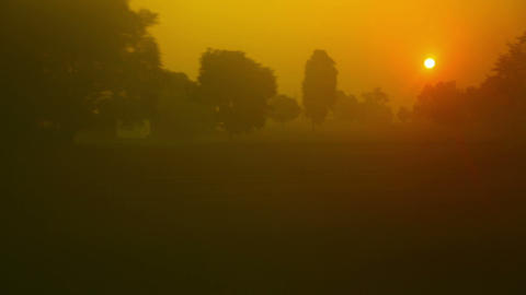 Hazy dawn Stock Video Footage