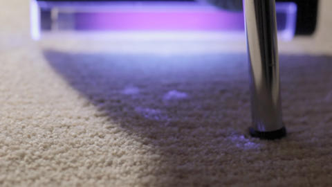 Blood traces on carpet under UV light Stock Video Footage