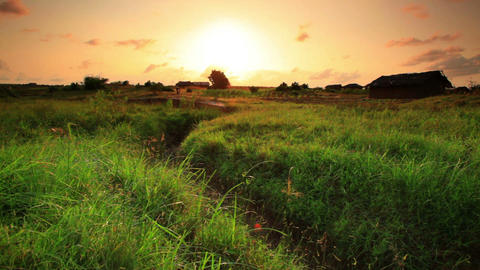 Panorama of a green field and dry ravine at sunset in Kenya Footage