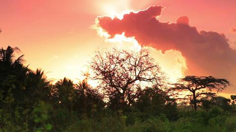 Pink morning clouds in Kenya Footage