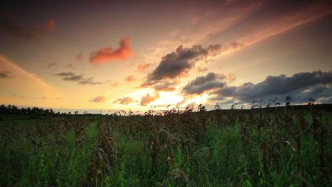 Time-lapse sunset near a village in Kenya Footage