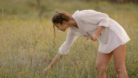 Natural beauty girl gathering flowers outdoor in freedom enjoyment concept Live Action