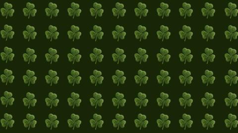 Clover St. Patricks Background Stock Video Footage