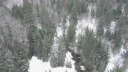 Small stream in Alaska Footage