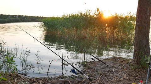 Fishing rod on river Footage