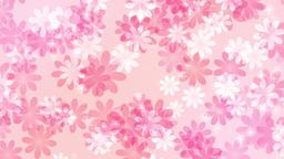 花 横に流れる パステルカラー ピンク CG動画素材