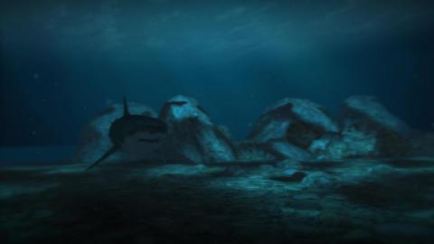 Big white shark generate computer animation CG動画
