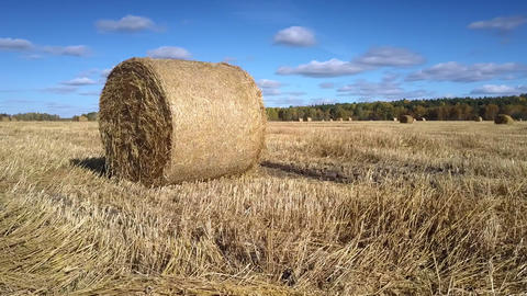 close view huge straw roll shines in sunlight on vast field Footage