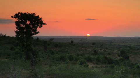 Sunset on the horizon in Kenya Live Action