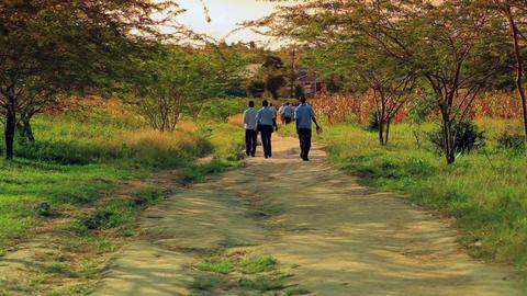School boys walking home from school in Kenya Footage