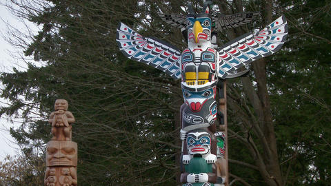 Close up of First Nations totem poles Footage