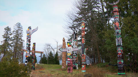 Angled footage of outdoor display of seven First Nations totem poles Footage