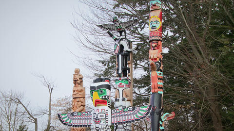 Angled footage of several First Nations totem poles Footage