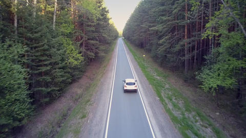 white auto drives along asphalt road in huge forest shadow Footage