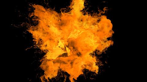Orange Color Burst - colorful smoke explosion fluid particles alpha matte Animation