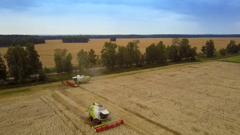 aerial combine stands by field protecting forest plantation Footage