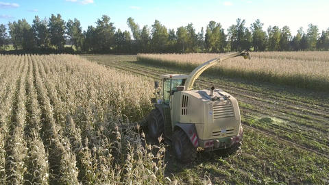 harvester with special design for cleaning crop ears Footage