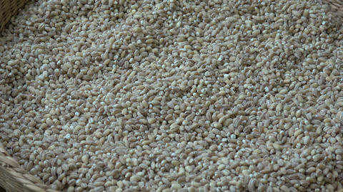 View into a basket full of wheat grains. Wheat grains. Wheat and cereals Live Action