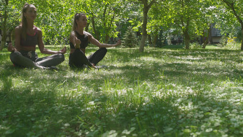 Women are sitting in lotus position and meditating on green meadow in park Footage