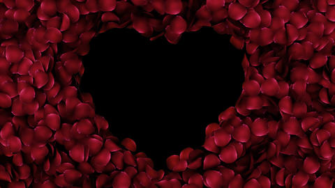 Animation petals of roses in a heart with alpha channel Stock Video Footage