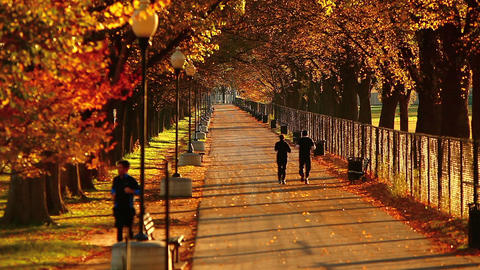 Static shot of a pedestrian walkway at the National Mall in Washington DC Footage
