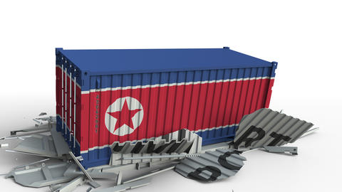 Container with flag of North Korea breaking container with IMPORT text Live Action