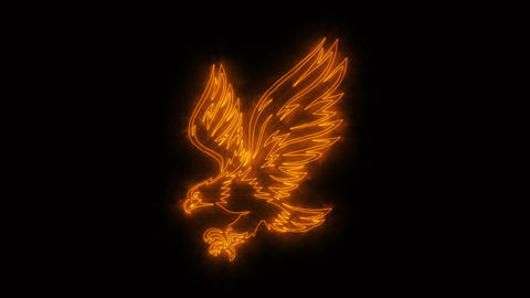 Orange Burning Eagle Animated Logo with Reveal Effect Animation