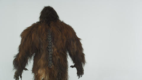 Back shot of hairy beast turned away from camera, turns and exits left. Against  Live Action