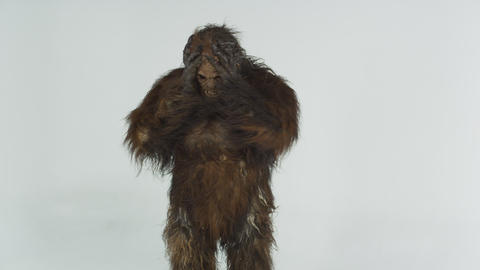 Front shot of hairy beast putting hands up to head. Shot in slow motion against  Footage