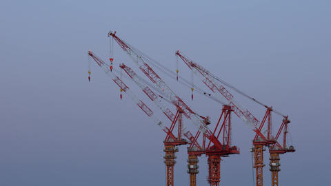 Tower Cranes at rest early in the morning Footage