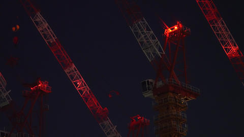 Tower Cranes at rest early in the morninganes Live Action