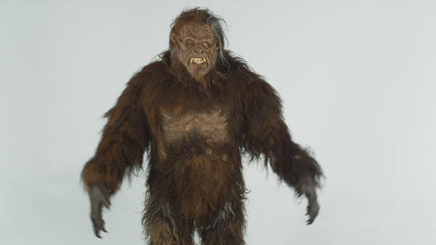Front shot of model dressed as hairy beast. Shot in slow motion against a grey s Live Action