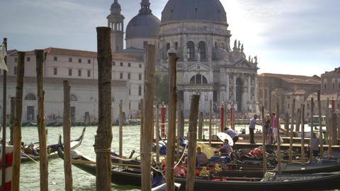 Busy gondolier docks near Santa Maria della Salute Footage