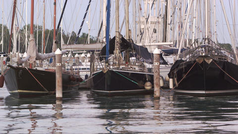 Static shot of the bow of some sailboats docked in the marina bobbing on gentile Footage