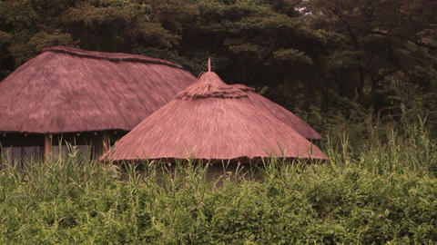 Grass-covered roofs of three structures Footage