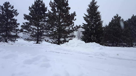 Winter Scenes 04