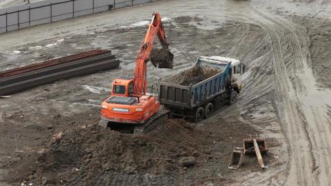 Excavator accurate loading Dump Truck Footage