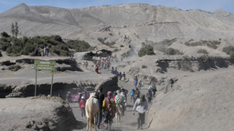 Tourists on horses coming from Bromo volcano,Bromo,Indonesia Footage